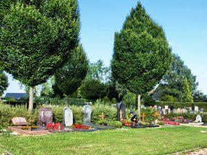 Friedhof Auringen Gräberreihe mit Bäumen