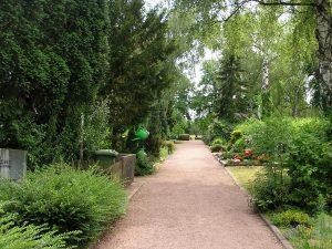 Schotterweg führt durch Gräberreihen die von Bäumen gesäumt sind