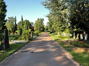 asphaltierte Straße führt durch die Gräberreihen die von Bäumen und Sträuchern gesäumt sind